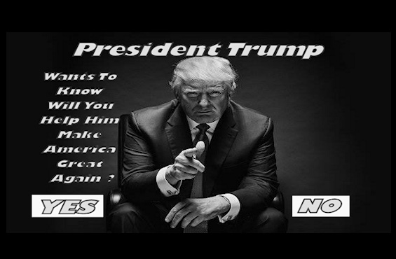 Poll: Will You Help President Trump Make America Great Again (No Email Required)
