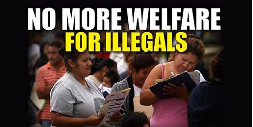 Image result for illegals welfare