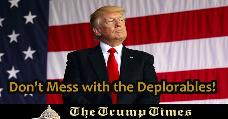The Trump Times KICKED the Hornets Nest!