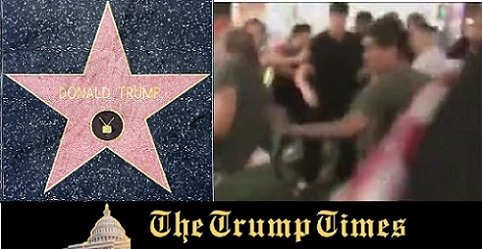 WATCH: Fight Breaks Out Over the Trump Star