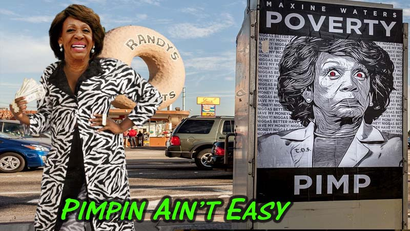 Maxine-Waters-Pimpin aint easy